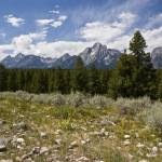 """Grand Teton Landscape"" by shep"