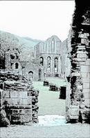 Ruins of an abbey in Wales
