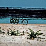 """Bicycle on Isla Mujeres Beach"" by JCarmen"