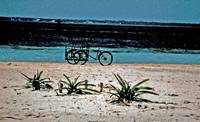 Bicycle on Isla Mujeres Beach