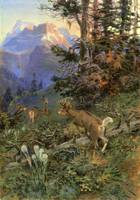 Deer in Forest (1917) by Charles Russell