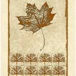 """Bare Trees and Maple Leaf"" by Pederbeck"