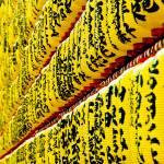 """""""Yellow lanterns"""" by manganite"""