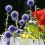 """""""Summerflowers, graphic style"""" by LutzBaar"""