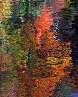 Singletary Lake Reflection Abstract