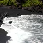 """""""Hawaii Black Sand Beach"""" by lisad"""