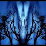 """Bright Angel"" by bluecard"