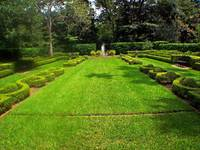 Bayou Bend Gardens - beautiful manicured flora