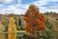 Autumn at Stourhead 5