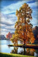 Autumn at Stourhead 2