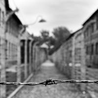 Auschwitz I Art Prints & Posters by Bruno Abarca