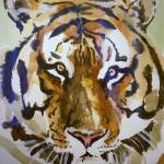 """tiger"" by sueg355"