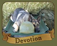 War Dog Devotion