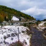 """""""Colorado Stream"""" by iThinkMedia"""