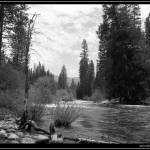 """River in Yosemite"" by andrewclift"