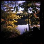 """091007_1_12 Morning Autumn Light"" by coleman_rogers"