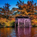 """Finch Lake Fall Duck Blind"" by Finchlake"