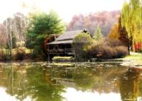 Watermill In Autumn
