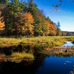 """Hopkinton Watershed in Fall"" by awgilmore"