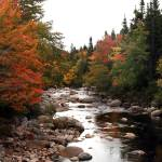 """Autumn Stream, Cape Breton 2009"" by ve1mos"