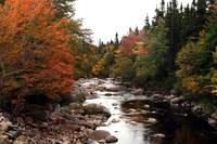 Autumn Stream, Cape Breton 2009