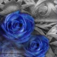 Blue Celtic Rose part 1