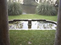 Pond at Kingston Maurward