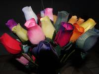 Multi Coloured Roses