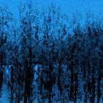 """""""In Winter"""