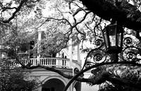 Meeting Street Porch, Charleston, SC