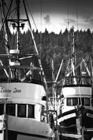 Fishing Boats in the Harbor Alert Bay