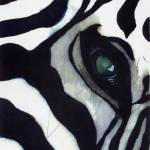 """Zebra Thoughts"" by rachelsstudiodotcom"