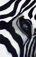 Zebra Thoughts