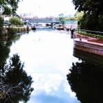 """""""Lea-Bridge-001"""" by CLiPiCs"""