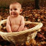 """Baby in Basket"" by cliftondesigns"