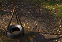 Tire Swing and Shadow