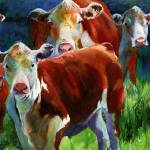 """Curious Cows II"" by rachelsstudiodotcom"