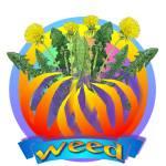 """""""weed2"""" by Braineatshead4"""
