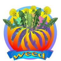 weed2
