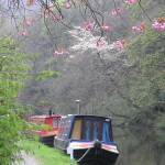 """Canal Boats in Spring"" by crypticpixel"