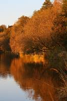 Autumn on the Grand River