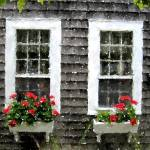 """""""Cape Windows 0410"""" by lakewentworth"""