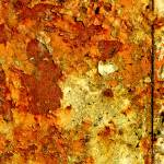 """rust3"" by daintree"