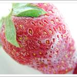 """Frozen Strawberry - Explored!"" by anshu"