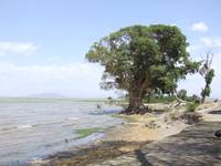 Lake in Ethiopia