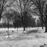 """""""Winter Walks"""" by Jennivive"""