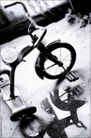tricycle reflection_8443