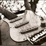 """Guitar de Tree"" by voodooart"