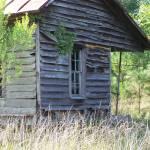 """""""Farmhand housing?"""" by JeanDavisOlecki"""