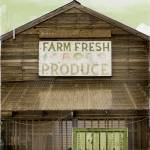 """Farm Fresh"" by KameraKat"